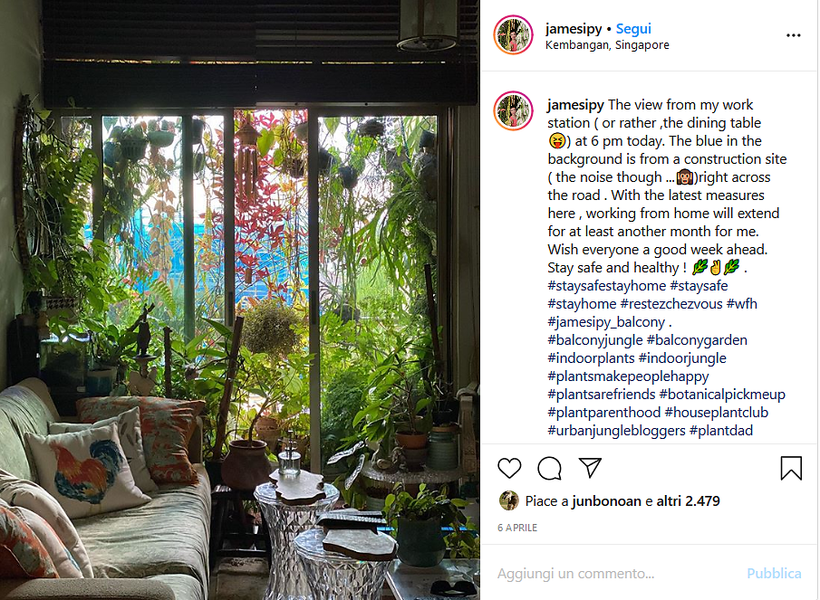 Screenshot-2020-04-14-james-ipys-balcony-jungle-su-Instagram-The-view-from-my-work-station-or-rather-the-dining-table-1.png