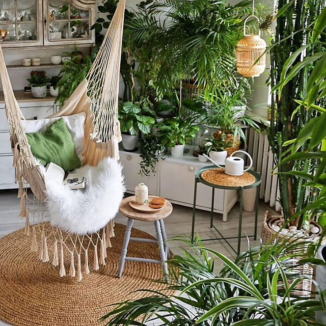 Screenshot-2020-04-17-Plants-Spark-Joy-su-Instagram-When-you-got-a-hammock-indoors-Who-would-hang-out-in-this-hammock-What.png